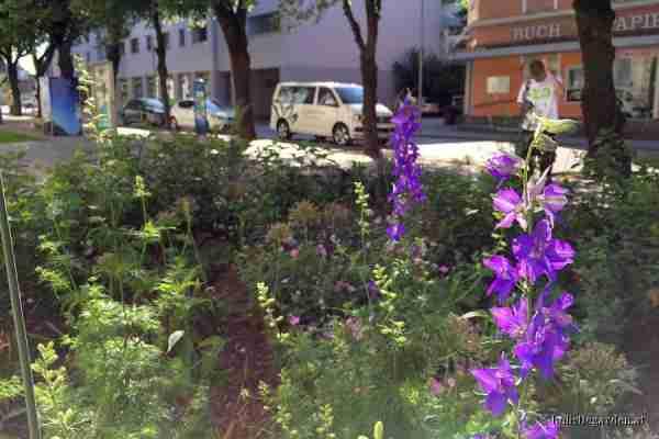 http://holisticgarden.at/data/image/thumpnail/image.php?image=167/holisticgarten_at_cortenstahl_-_beet_article_3388_0.jpg&width=600
